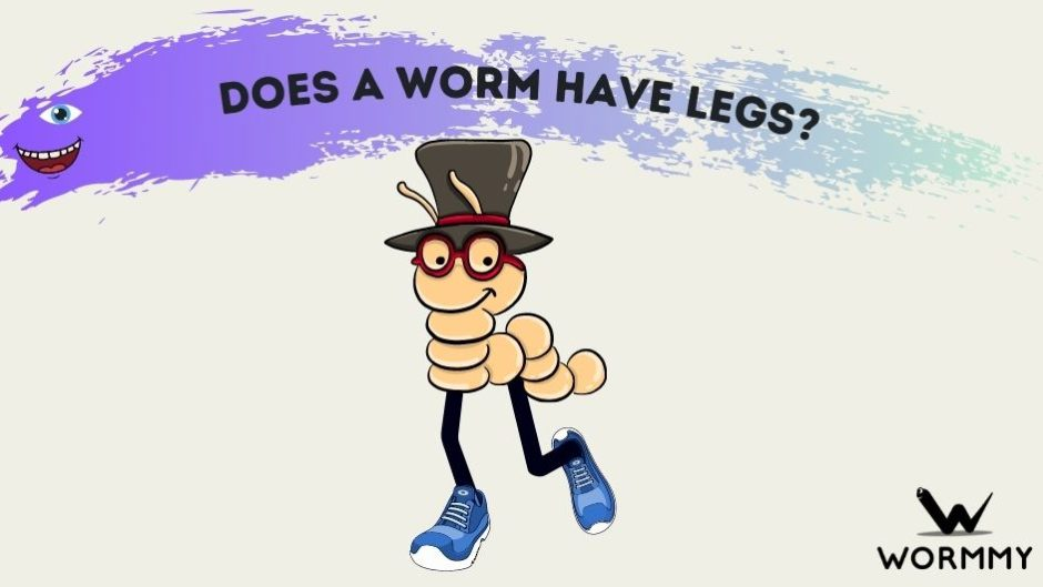 does a worm have legs blog banner
